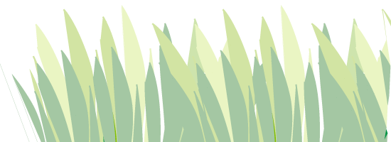 grass-footer.png