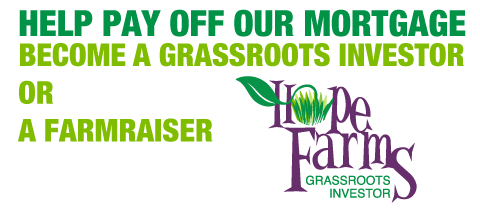 grassroots-header2.png