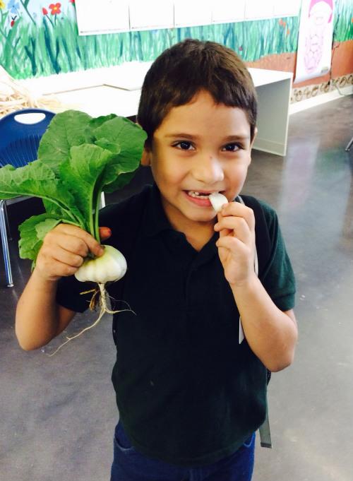 berry 1st grader trying radish.jpg