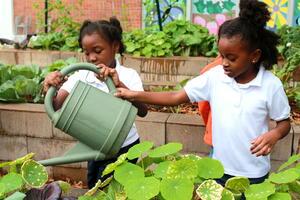 H-Down-H-Watering the garden.JPG